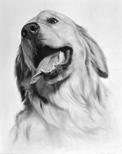 dibujos de perros a lápiz
