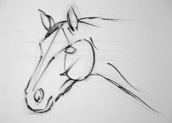 Dibujos A Lápiz De Caballos Dibujos A Lápiz