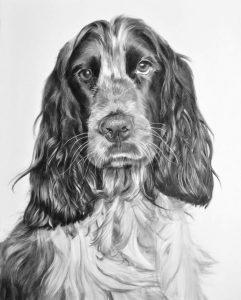 dibujos de perros a lápiz muy bonitos