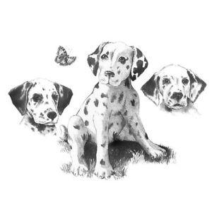 dibujos de perros con lápiz dalmtas