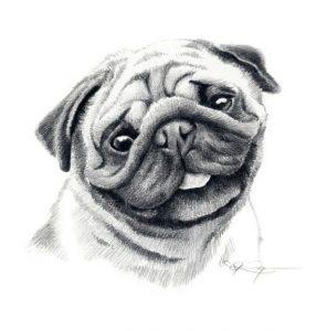 Dibujos a l piz de Perros Dibujos