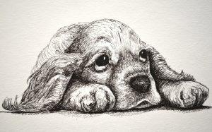 dibujos perros lapiz