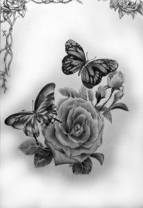 dibujos a lápiz de mariposas
