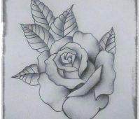 dibujos con lapiz de rosas