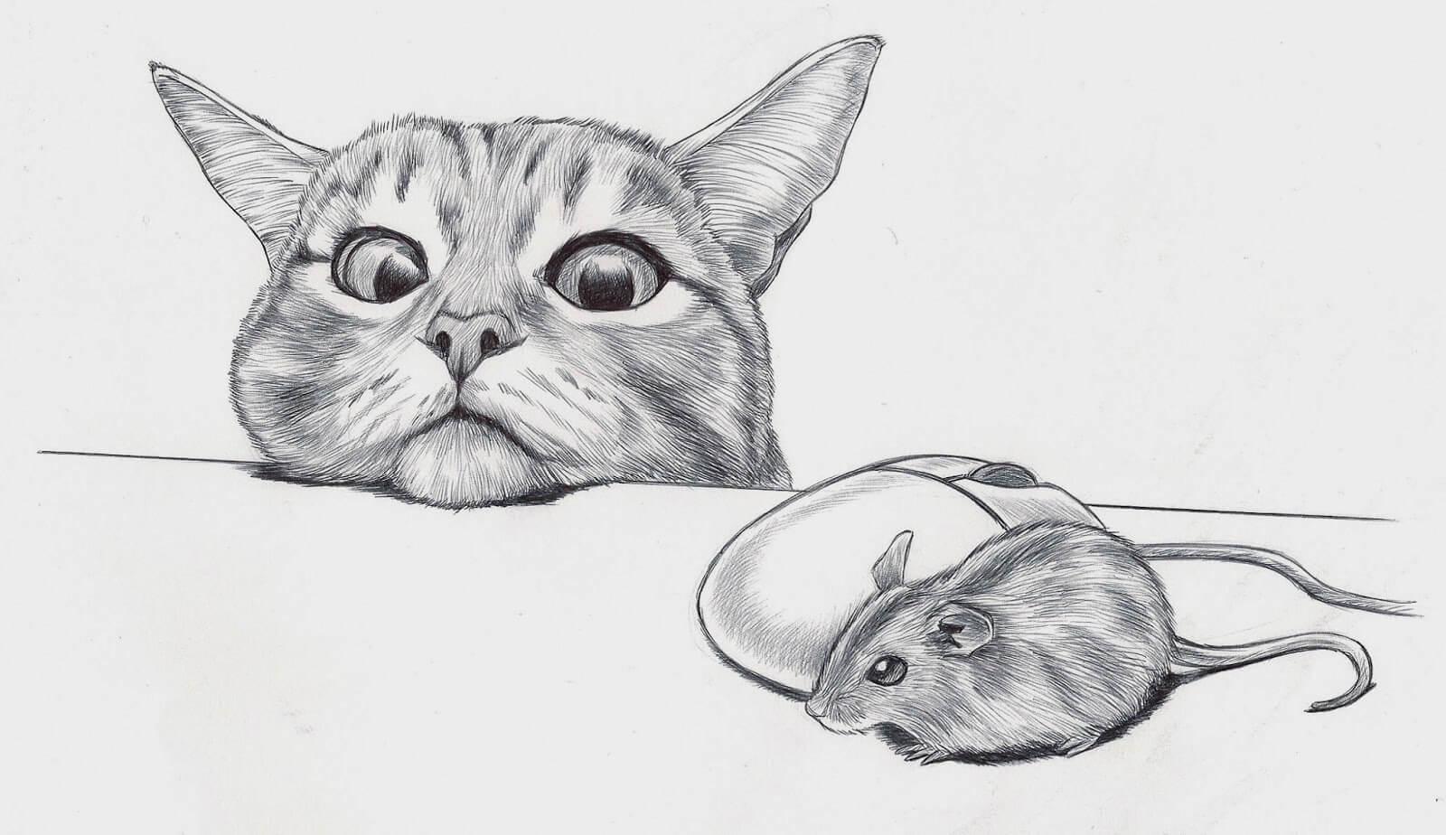 Dibujos de animales a lapiz o carboncillo - Página 3 Dibujos-de-gatos-a-lapiz
