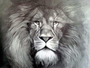 dibujos de leones a lapiz perrones