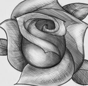 rosas a lapiz chidas