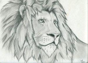 Los Dibujos De Leones A Lapiz Que Te Haran Rugir Salvajemente