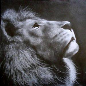 leones a lapiz