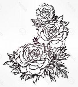 Dibujos A Lapiz De Rosas