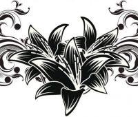 Dibujos de Orquídeas a lápiz 2018
