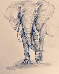 dibujos chidos de elefantes