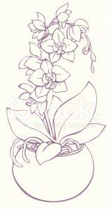 dibujos de orquídeas perrones