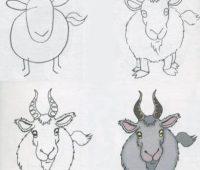 Dibujos a Lápiz para Principiantes cabra