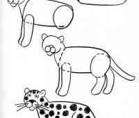Dibujos a Lápiz para Principiantes de animales