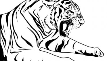 Dibujos de Tigres para imprimir