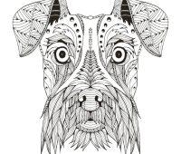 mandalas de animales a lápiz