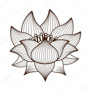 dibujos de la flor de loto