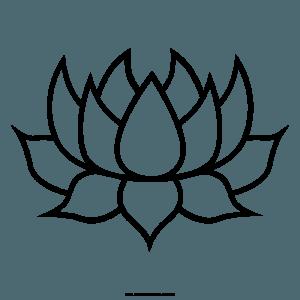 flor de loto chida