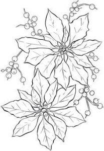 Dibujos De Nochebuenas A Lápiz Muy Bonitos Para Imprimir