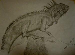 Dibujos De Iguanas A Lápiz Realistas Geniales Para Apostar