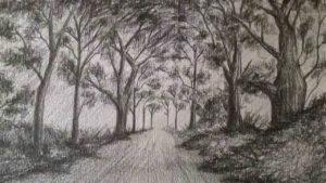 bosque hecho a lápiz