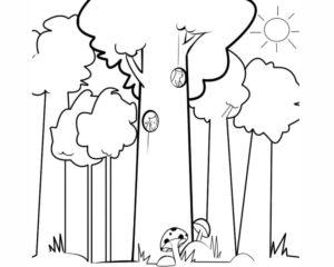 bosques a lápiz