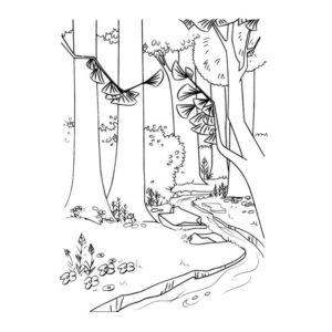bosques en lápiz