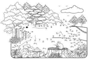 dibujos de bosques a lápiz