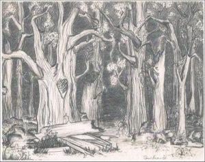 imagenes a lápiz de bosques