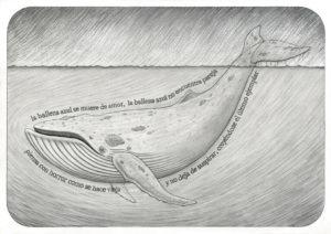 dibujos de ballenas para descargar