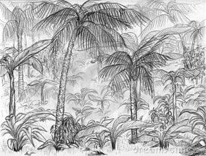 dibujos de selva gratis