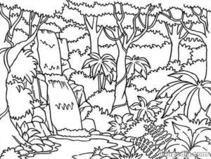 dibujos de selva para imprimir