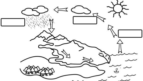 ciclo del agua para imprimir