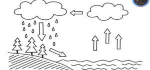 imágenes del ciclo del agua
